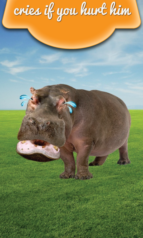 Talking Hippo - screenshot