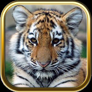 Game Baby Animal Games APK