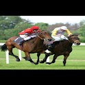 HORSE RACING TIPS MP icon