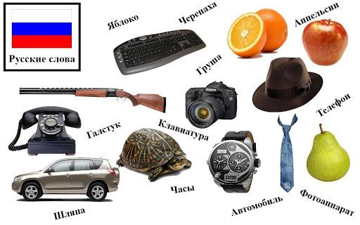 免費下載教育APP|俄語單詞 app開箱文|APP開箱王