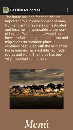 Passion for horses