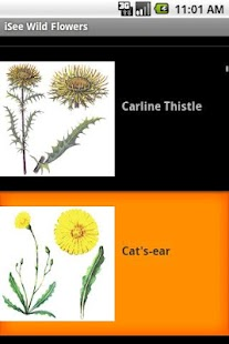 iSee Wild Flowers- screenshot thumbnail