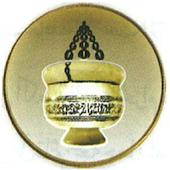 Medina Hafti