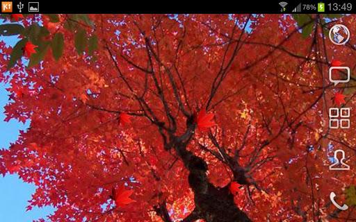 免費個人化App|Maple LWP PRO|阿達玩APP