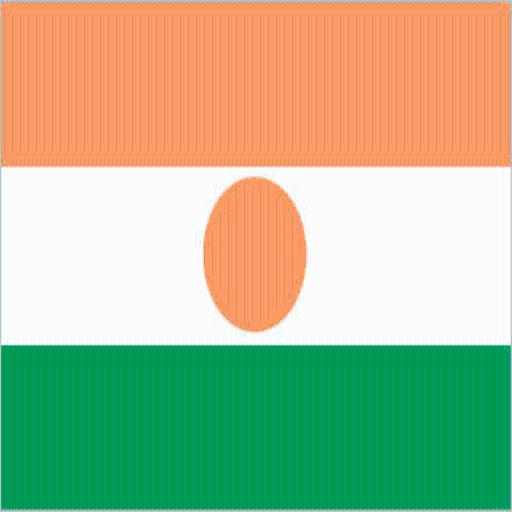 Niger Facts LOGO-APP點子