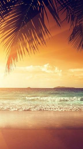 【免費個人化App】夕陽在海灘上動態壁紙-APP點子