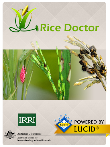 Rice Doctor