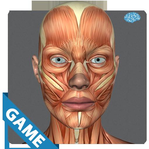 肌肉解剖游戏 解謎 App LOGO-APP試玩