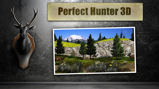 Perfect Hunter 3D
