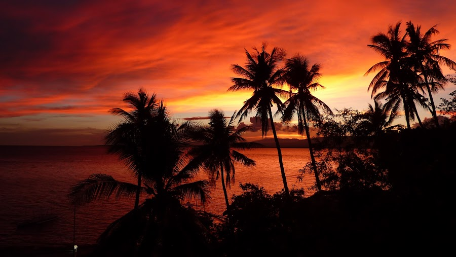 Romantic Sunset by Gladys N-t - Uncategorized All Uncategorized (  )
