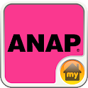ANAP-ANAP INTERFACE Theme icon