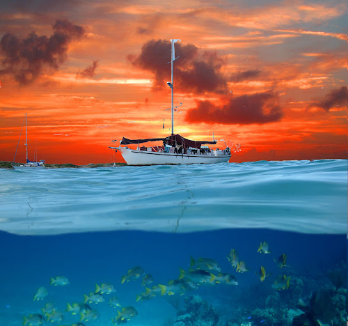 above, below and more by Jay Anderson - Landscapes Waterscapes ( shore, coral, relax, fish, ship, cruse, ocean, sail boat, island, sailing, swim, sail, bahamas, water, saling, dive, sea, shark, boat, nassau, vacation, red, blue, sunset, wave, scuba, cloud, , color, colors, landscape, portrait, object, filter forge, Free, Freedom, Inspire, Inspiring, Inspirational, Emotion, device, transportation, tranquil, relaxing, tranquility, sea creatures, underwater life, ocean life )