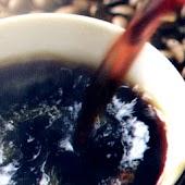 コーヒー豆ガイド