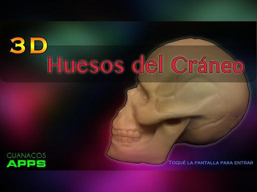 Huesos del Cráneo 3D