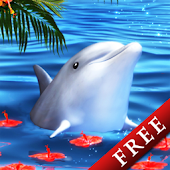 Dolphin -Carnelian-Trial