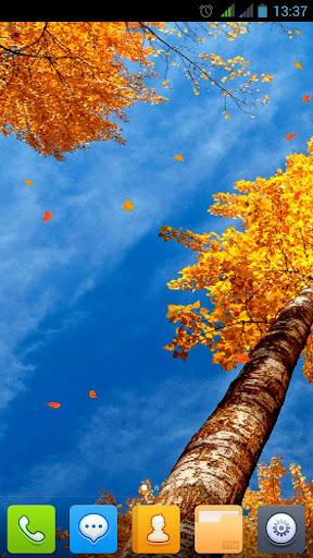 美丽的秋天动态壁纸