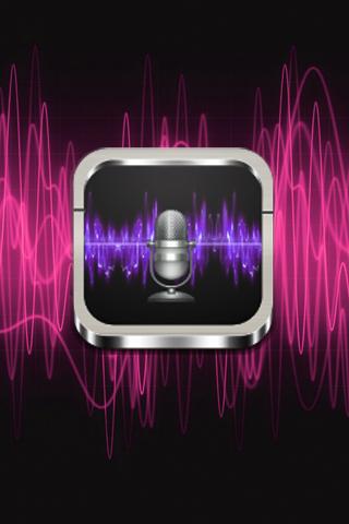 Easy SD voice recorder
