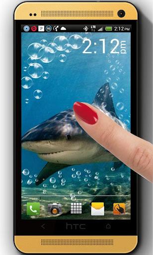 Shark Gold HD live wallpaper