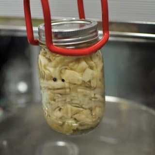 Pickled Oyster Mushrooms