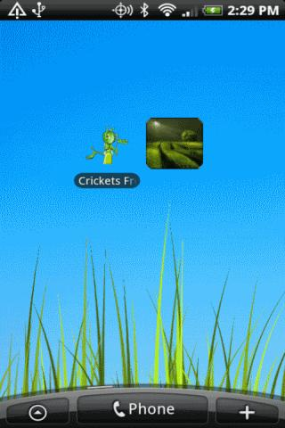 Crickets - screenshot