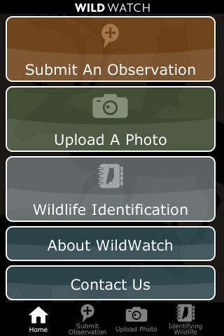 WildWatch