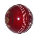 Improve Your Cricket Hypnosis icon