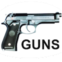 Guns Memory logo