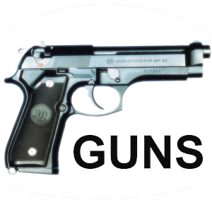 Guns Memory for PC and MAC