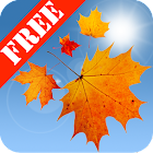 Autumn Leaves Free icon