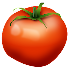 Fruits Vegetables EU Seasons icon