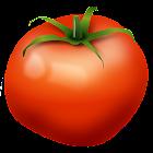 Fruits Vegetables EU Seasons icon
