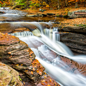 Murray Reynolds Falls by Kevin Egan - Landscapes Waterscapes ( water, rickett's glen, color, fall, waterfall, pennsylvania,  )