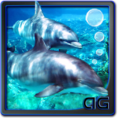 Dolphins with Bubbles LWP