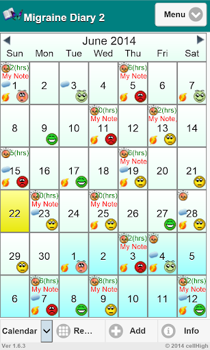Migraine Diary 2