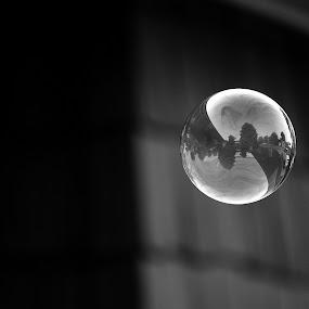 by Sara Humphrey - Abstract Macro