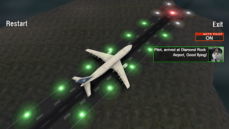 Airplane Night Flight Time Sim 1 screenshot 88011