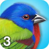 iBird Yard Plus