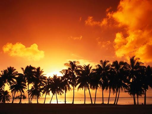 Sunset View HD Wallpaper