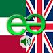 Italian to English Pro