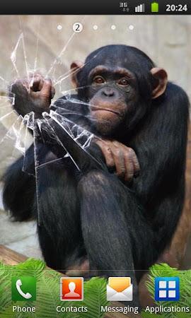 Funny Monkey Live Wallpaper 1.2.1 screenshot 322694