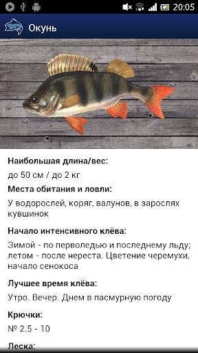 Прогноз рыбалки и погоды FREE