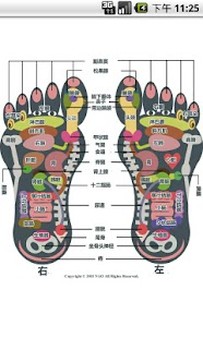 Reflexology foot chart - screenshot thumbnail