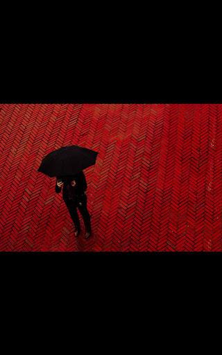 Mi4 BW Umbrella live wallpaper