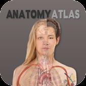 Human Anatomy Atlas Free