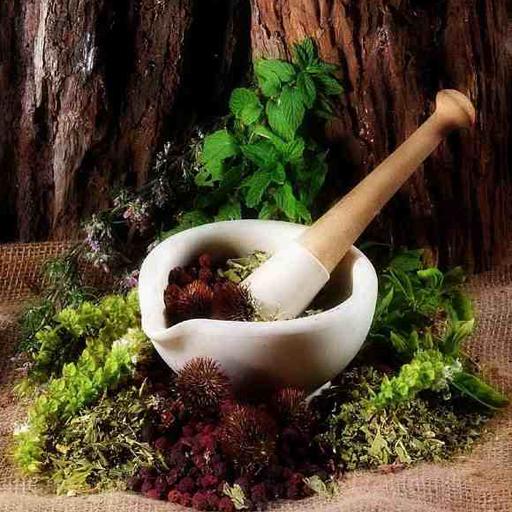 الطب البديل بالاعشاب