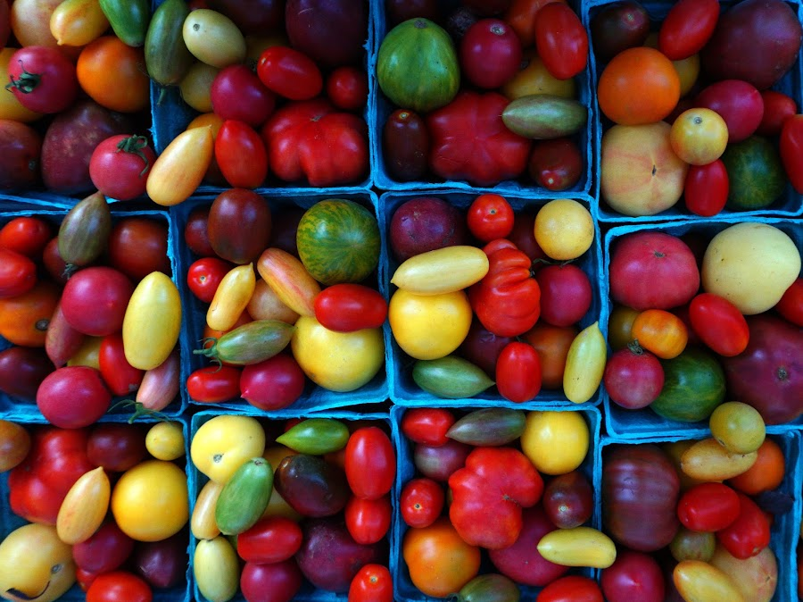 Tomatoes Of All Shapes, Sizes and Colors by VAM Photography - Food & Drink Fruits & Vegetables ( market, cities, colors, nyc, places, tomatoes,  )