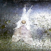 White-Gray Tossock Moth