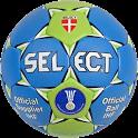 Estadisticas Handball icon