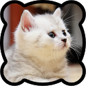 Jigsaw puzzles. Cats icon
