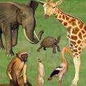 Click! Zoo logo